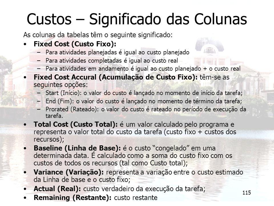 115 Custos – Significado das Colunas As colunas da tabelas têm o seguinte significado: Fixed Cost (Custo Fixo): –Para atividades planejadas é igual ao