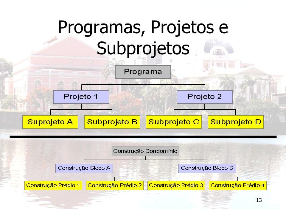 13 Programas, Projetos e Subprojetos