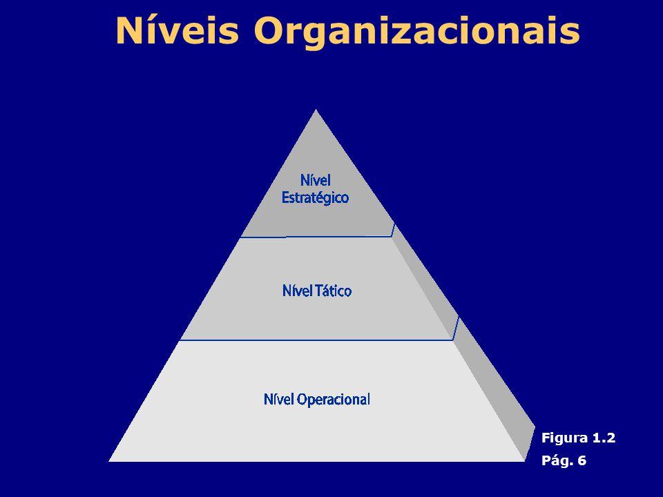 Níveis Organizacionais Figura 1.2 Pág. 6