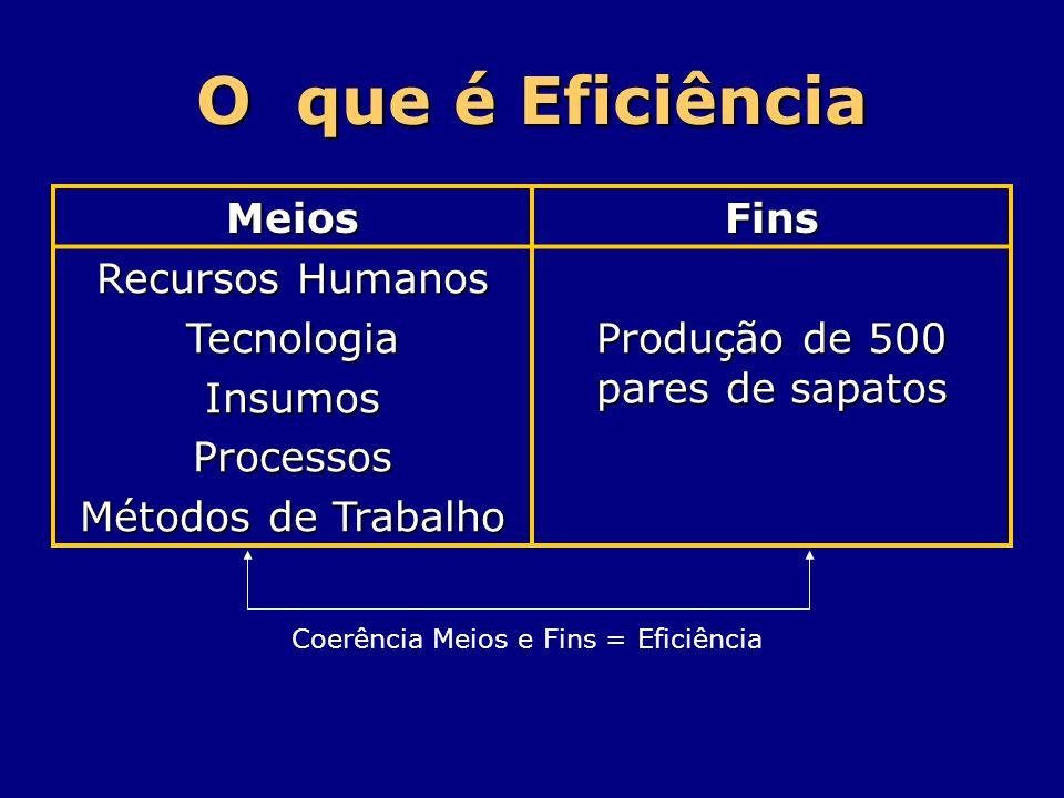 O que é Eficiência MeiosFins Recursos Humanos TecnologiaInsumosProcessos Métodos de Trabalho Produção de 500 pares de sapatos Coerência Meios e Fins =
