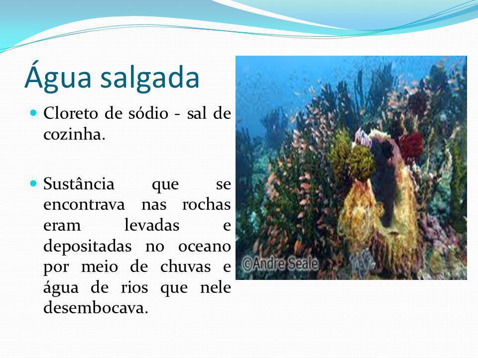 Água Doce Água subterrânea Água da Chuva Icebergs Rios Lagos Água doce porque possuem menos sais dissolvidos nela do que a água do mar.