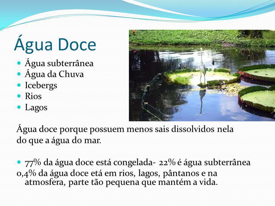 Água Doce Água subterrânea Água da Chuva Icebergs Rios Lagos Água doce porque possuem menos sais dissolvidos nela do que a água do mar. 77% da água do