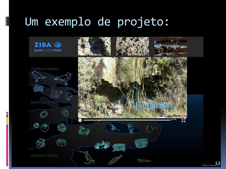 Um exemplo de projeto: 12