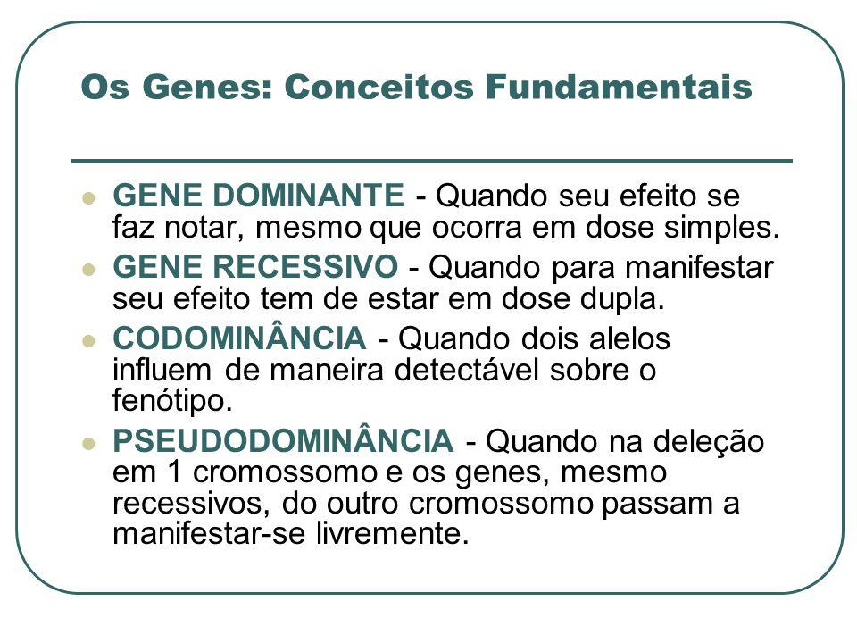 Os Genes: Conceitos Fundamentais GENE DOMINANTE - Quando seu efeito se faz notar, mesmo que ocorra em dose simples. GENE RECESSIVO - Quando para manif