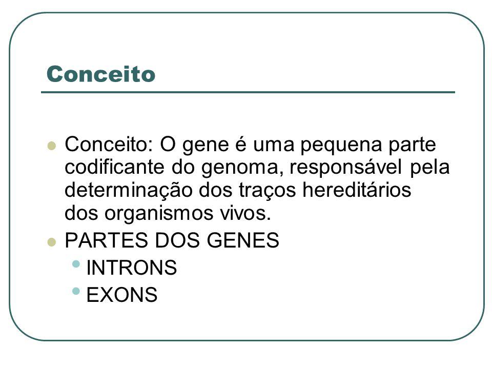 Conceito Conceito: O gene é uma pequena parte codificante do genoma, responsável pela determinação dos traços hereditários dos organismos vivos. PARTE