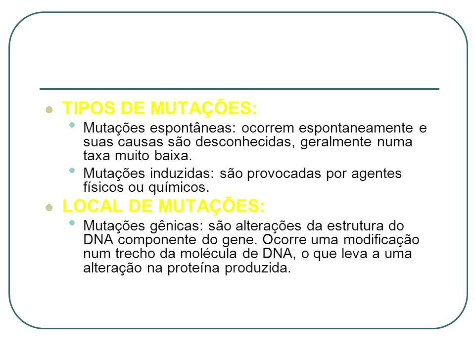 TIPOS DE MUTAÇÕES: Mutações espontâneas: ocorrem espontaneamente e suas causas são desconhecidas, geralmente numa taxa muito baixa. Mutações induzidas