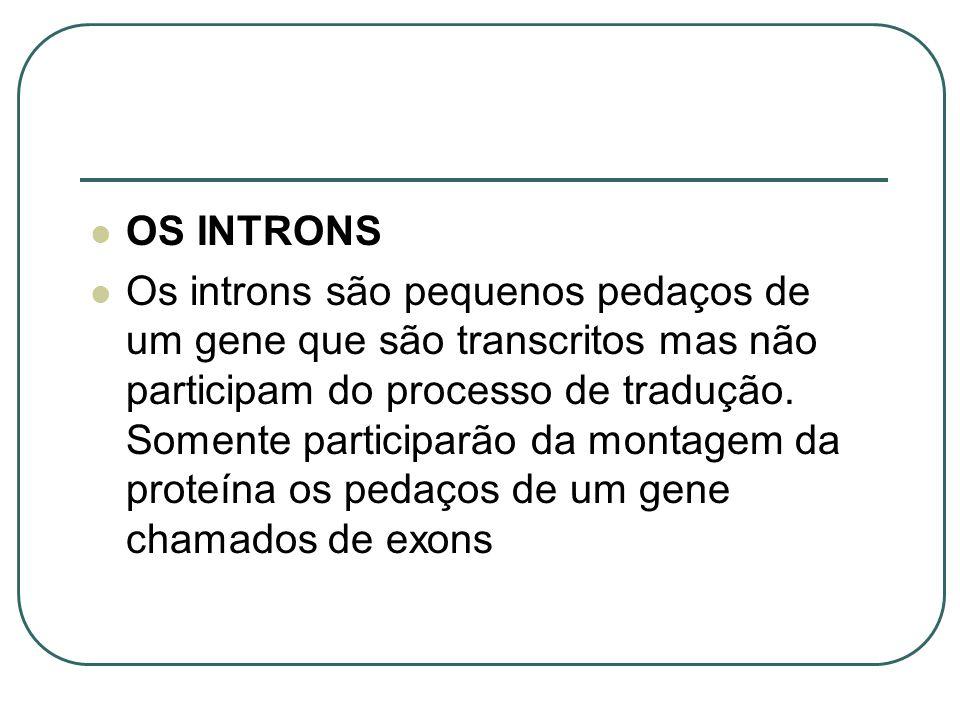 OS INTRONS Os introns são pequenos pedaços de um gene que são transcritos mas não participam do processo de tradução. Somente participarão da montagem