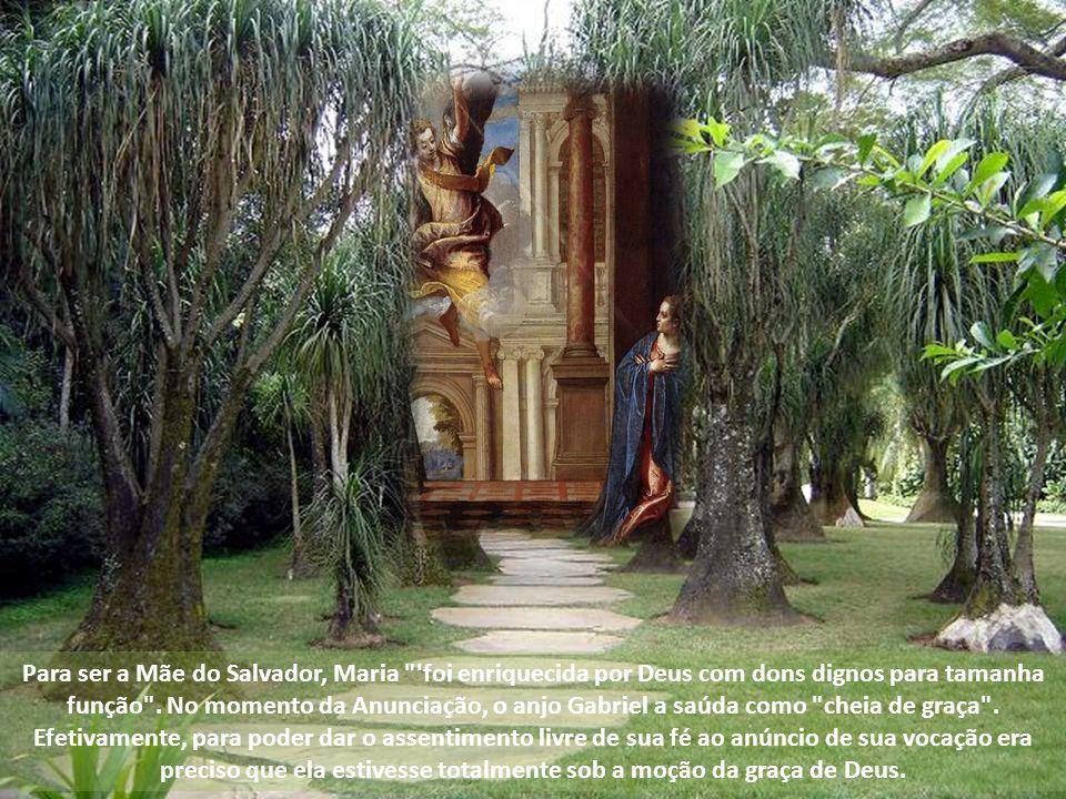 Para ser a Mãe do Salvador, Maria foi enriquecida por Deus com dons dignos para tamanha função .