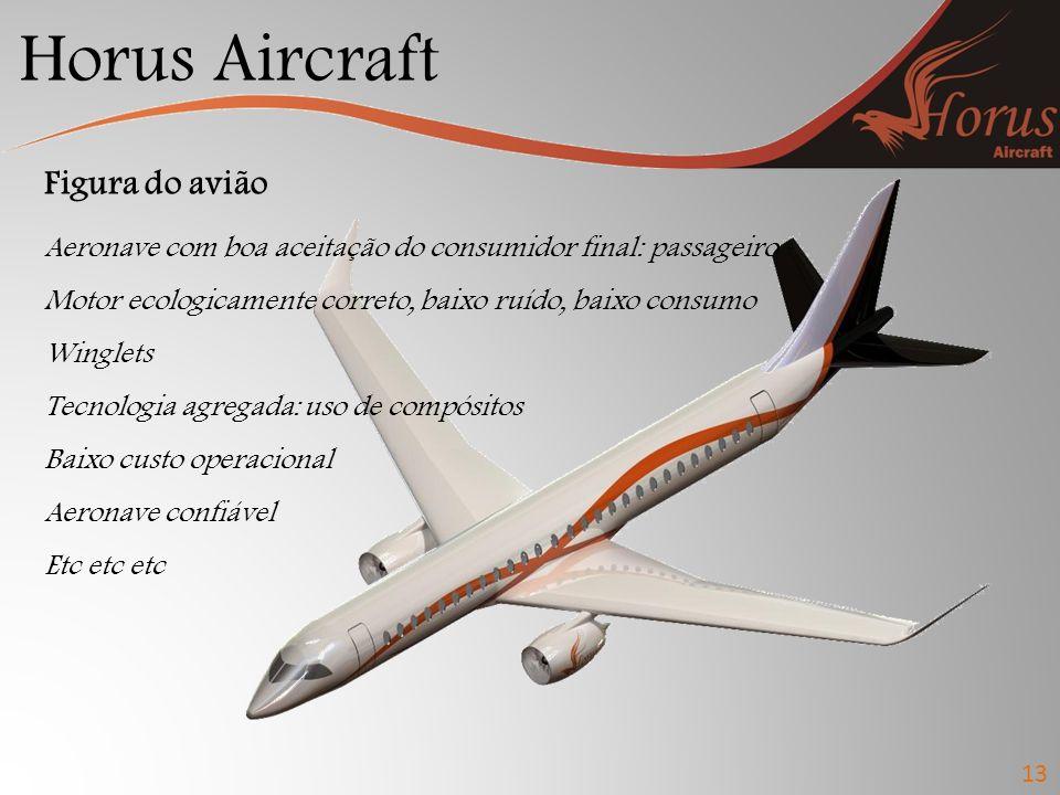 Horus Aircraft 13 Figura do avião Aeronave com boa aceitação do consumidor final: passageiro Motor ecologicamente correto, baixo ruído, baixo consumo Winglets Tecnologia agregada: uso de compósitos Baixo custo operacional Aeronave confiável Etc etc etc