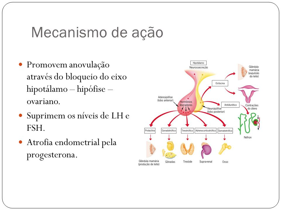 Mecanismo de ação Promovem anovulação através do bloqueio do eixo hipotálamo – hipófise – ovariano. Suprimem os níveis de LH e FSH. Atrofia endometria