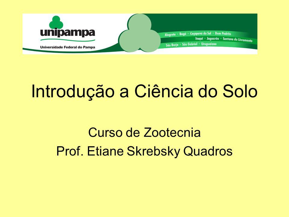 Introdução a Ciência do Solo Curso de Zootecnia Prof. Etiane Skrebsky Quadros