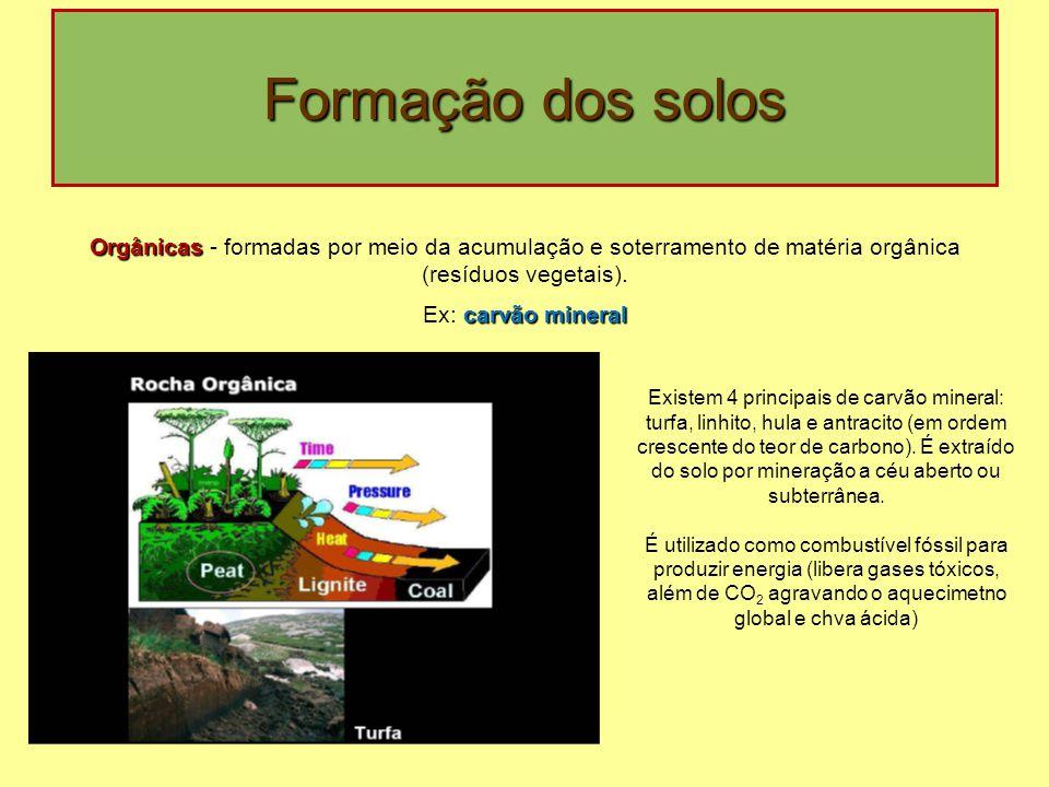Formação dos solos Orgânicas Orgânicas - formadas por meio da acumulação e soterramento de matéria orgânica (resíduos vegetais). carvão mineral Ex: ca