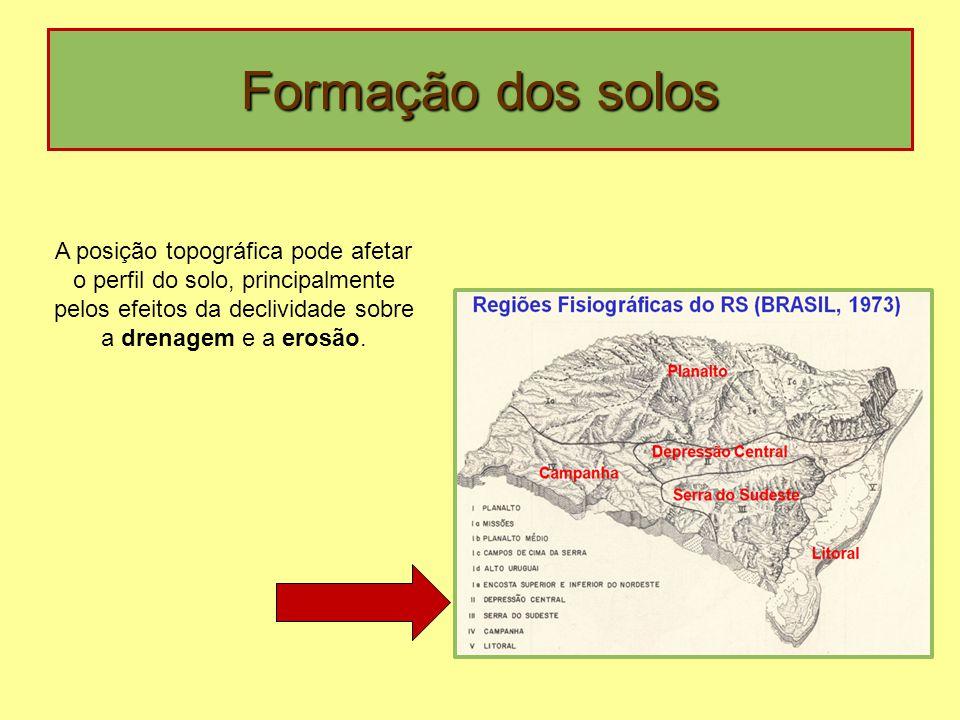 Formação dos solos A posição topográfica pode afetar o perfil do solo, principalmente pelos efeitos da declividade sobre a drenagem e a erosão.