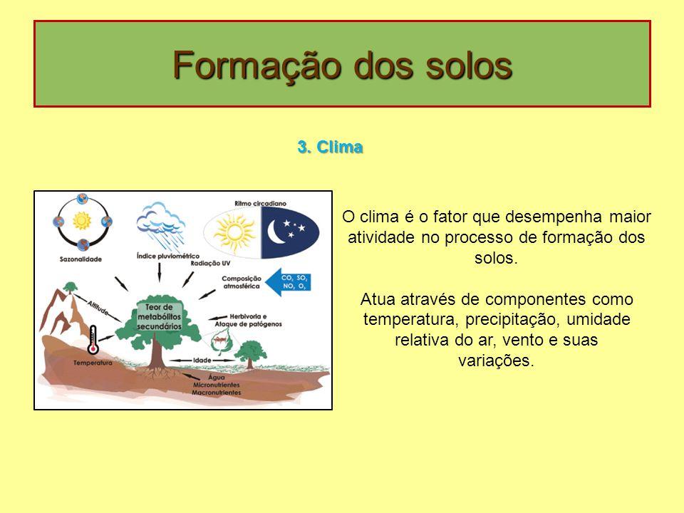 Formação dos solos 3. Clima O clima é o fator que desempenha maior atividade no processo de formação dos solos. Atua através de componentes como tempe