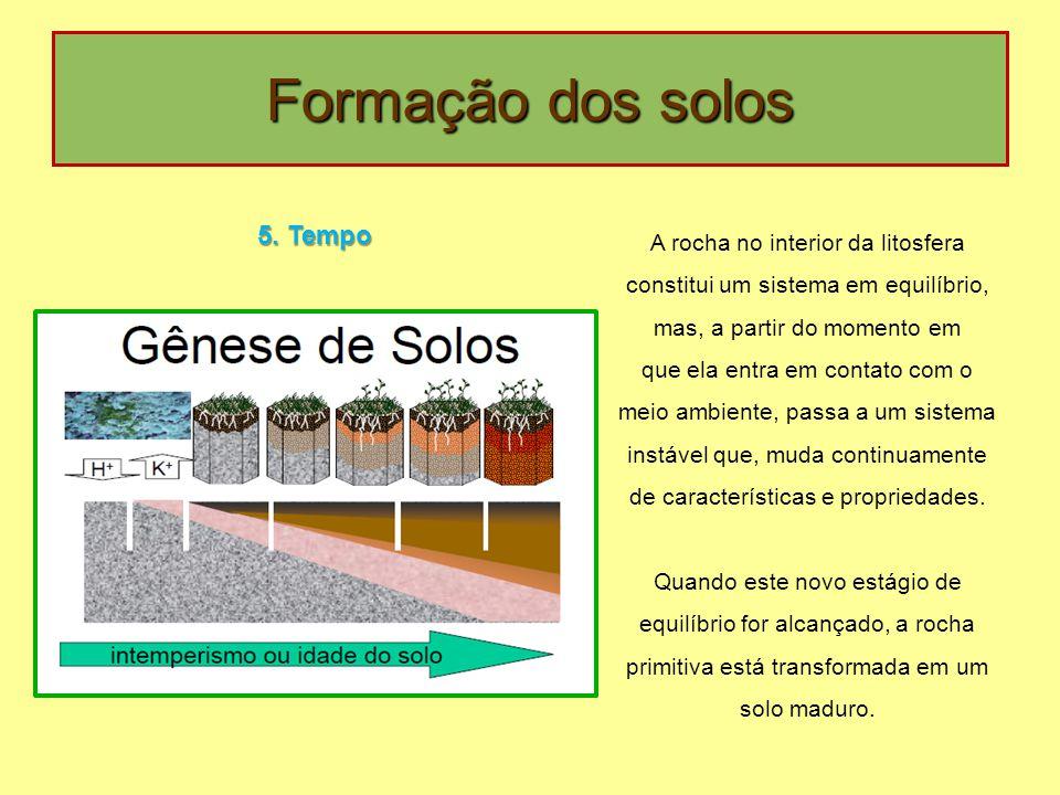 Formação dos solos 5.
