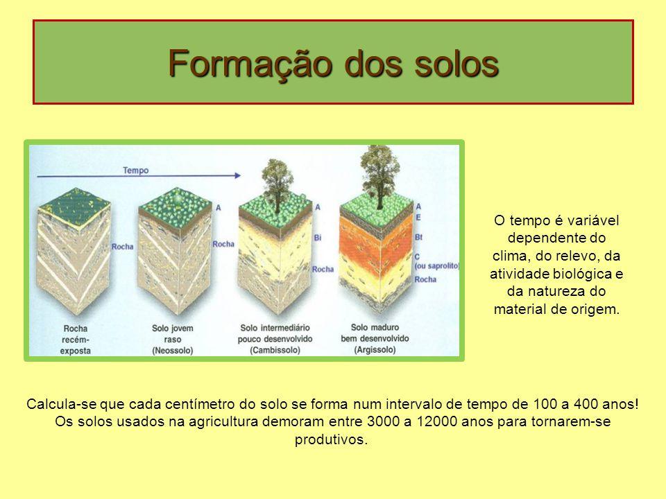 Formação dos solos Calcula-se que cada centímetro do solo se forma num intervalo de tempo de 100 a 400 anos! Os solos usados na agricultura demoram en