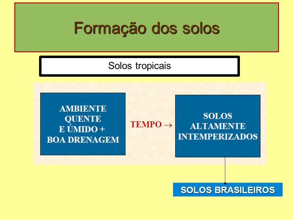 Formação dos solos SOLOS BRASILEIROS Solos tropicais