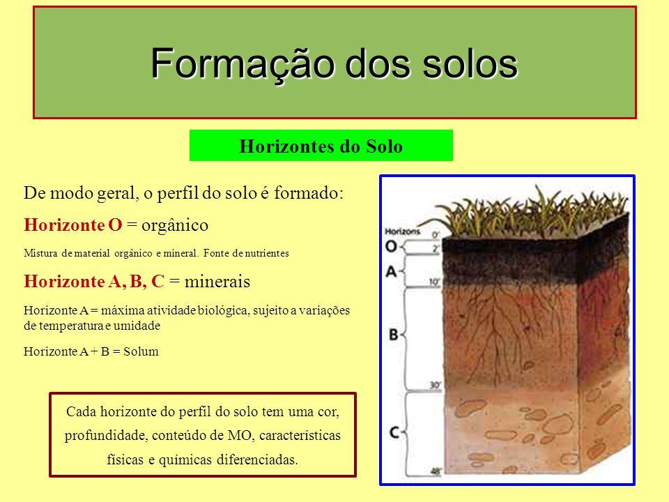 Formação dos solos Horizontes do Solo De modo geral, o perfil do solo é formado: Horizonte O = orgânico Mistura de material orgânico e mineral.