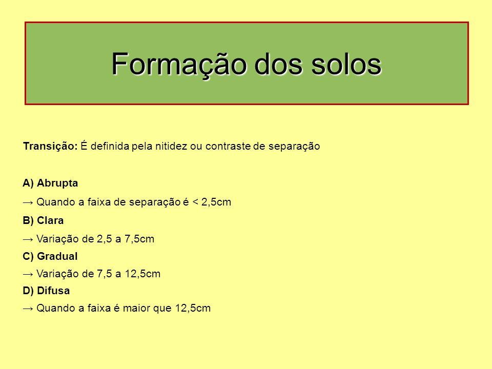 Transição: É definida pela nitidez ou contraste de separação A) Abrupta → Quando a faixa de separação é < 2,5cm B) Clara → Variação de 2,5 a 7,5cm C) Gradual → Variação de 7,5 a 12,5cm D) Difusa → Quando a faixa é maior que 12,5cm Formação dos solos
