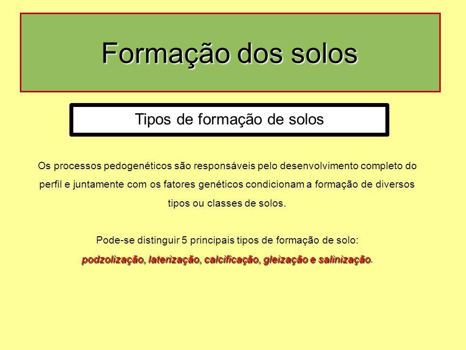 Formação dos solos Os processos pedogenéticos são responsáveis pelo desenvolvimento completo do perfil e juntamente com os fatores genéticos condicionam a formação de diversos tipos ou classes de solos.