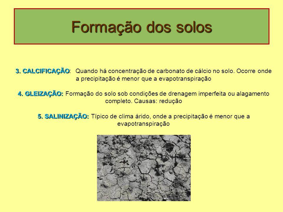 Formação dos solos 3. CALCIFICAÇÃO 3. CALCIFICAÇÃO: Quando há concentração de carbonato de cálcio no solo. Ocorre onde a precipitação é menor que a ev
