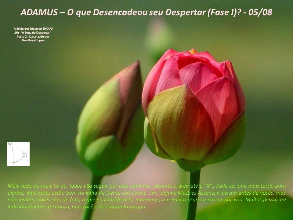ADAMUS – O que Desencadeou seu Despertar (Fase I).