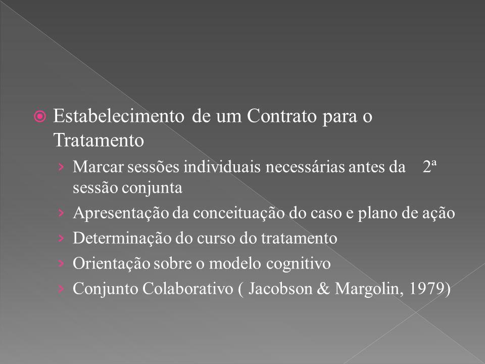  Estabelecimento de um Contrato para o Tratamento › Marcar sessões individuais necessárias antes da 2ª sessão conjunta › Apresentação da conceituação