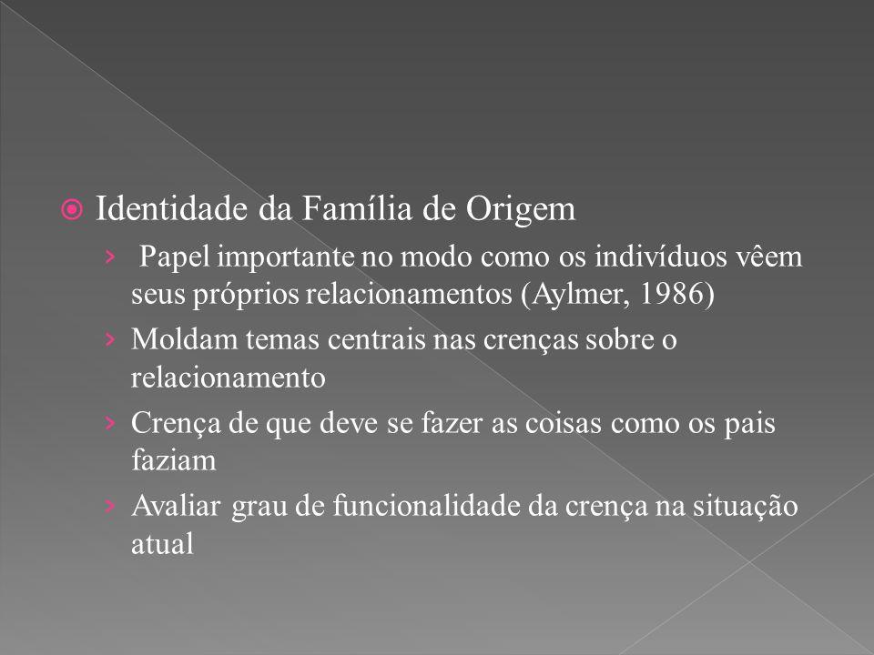  Identidade da Família de Origem › Papel importante no modo como os indivíduos vêem seus próprios relacionamentos (Aylmer, 1986) › Moldam temas centr