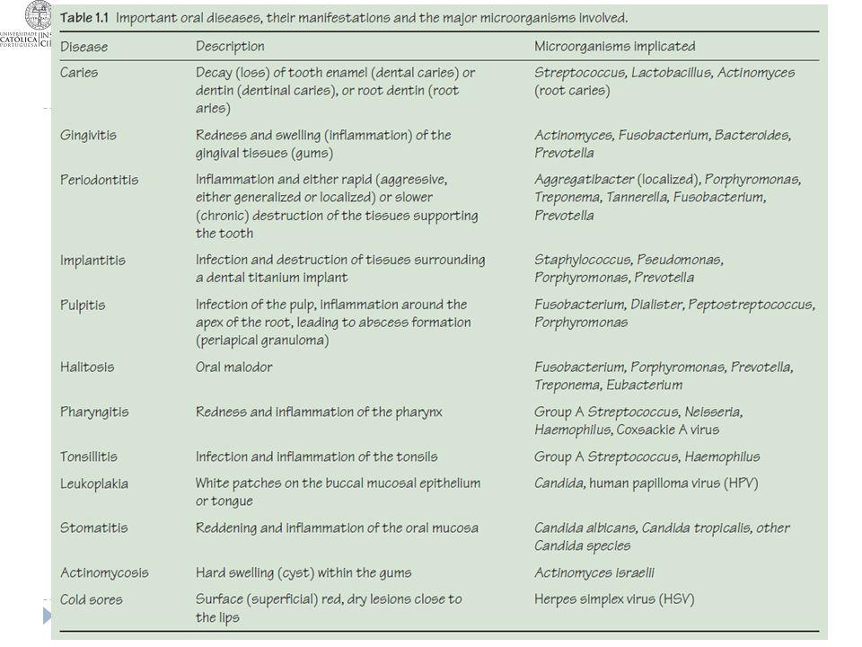 Principais infecções da cavidade oral 22-10-2013T16MJC6