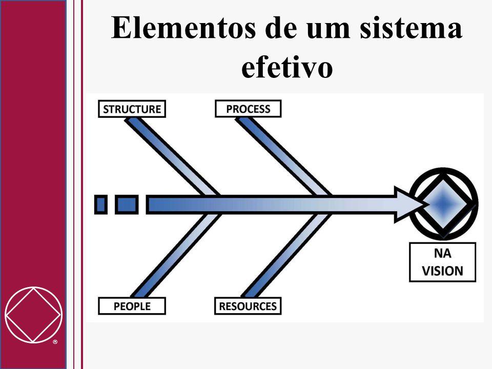  Elementos de um sistema efetivo