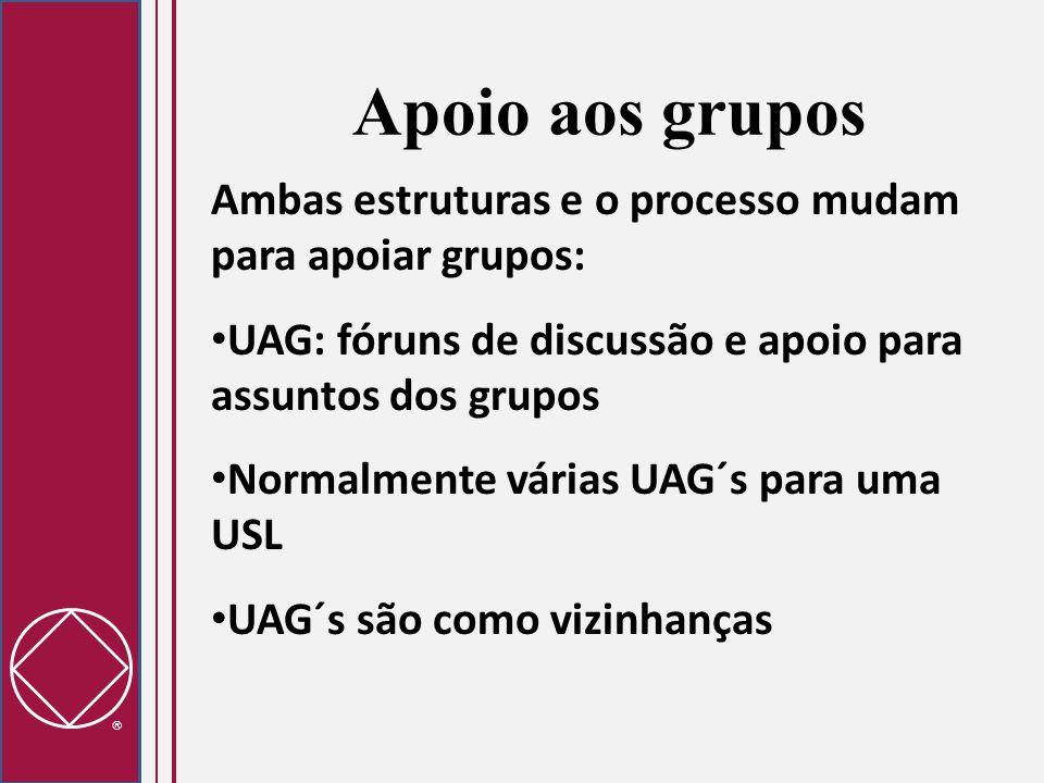  Apoio aos grupos Ambas estruturas e o processo mudam para apoiar grupos: UAG: fóruns de discussão e apoio para assuntos dos grupos Normalmente vária