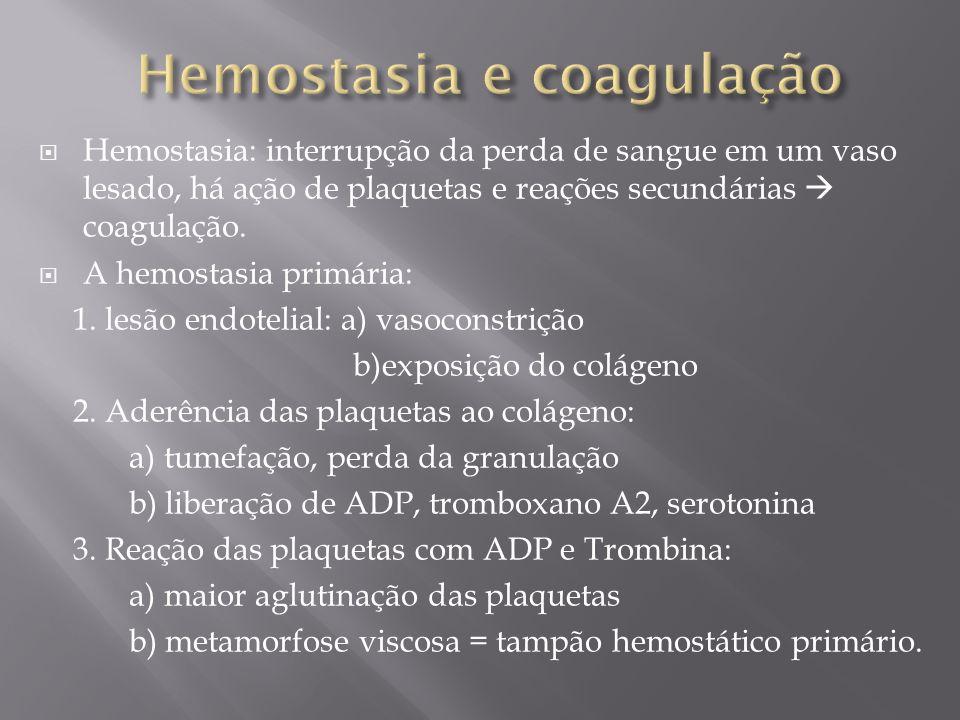  Anticoagulação urgente não é recomendado para o tratamento de pacientes com AVCI (Classe III, Nível de Evidência A).