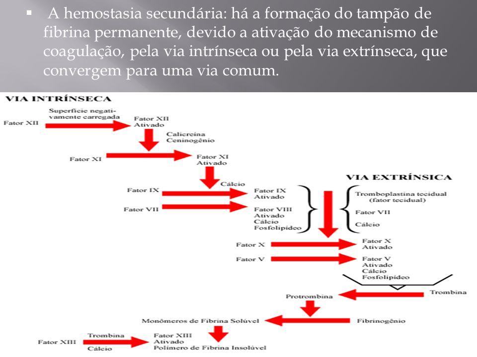  Administrar VO aspirina (dose inicial de 325 mg), 24 a 48 horas após o início do AVC, para o tratamento da maioria dos pacientes (Classe I; Nível de Evidência A).