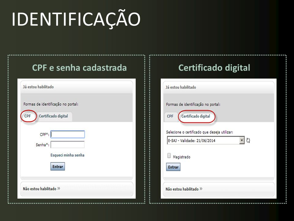 CPF e senha cadastradaCertificado digital IDENTIFICAÇÃO