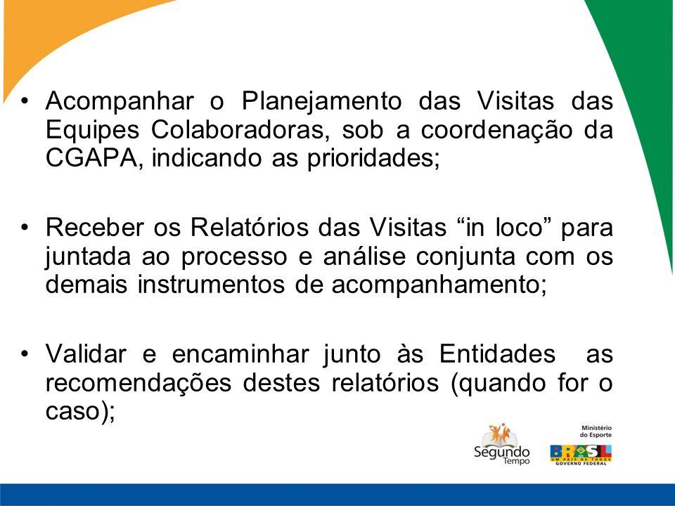 Acompanhar o Planejamento das Visitas das Equipes Colaboradoras, sob a coordenação da CGAPA, indicando as prioridades; Receber os Relatórios das Visit