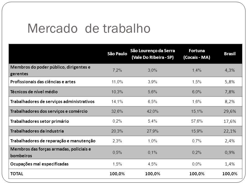 Mercado de trabalho São Paulo São Lourenço da Serra (Vale Do Ribeira - SP) Fortuna (Cocais - MA) Brasil Membros do poder público, dirigentes e gerentes 7,2%3,0%1,4% 4,3% Profissionais das ciências e artes 11,0%3,9%1,5% 5,8% Técnicos de nível médio 10,3%5,6%6,0% 7,8% Trabalhadores de serviços administrativos 14,1%6,5%1,6% 8,2% Trabalhadores dos serviços e comércio 32,6%42,0%15,1% 29,6% Trabalhadores setor primário 0,2%5,4%57,6% 17,6% Trabalhadores da industria 20,3%27,9%15,9% 22,1% Trabalhadores de reparação e manutenção 2,3%1,0%0,7% 2,4% Membros das forças armadas, policiais e bombeiros 0,5%0,1%0,2% 0,9% Ocupações mal especificadas 1,5%4,5%0,0% 1,4% TOTAL100,0%
