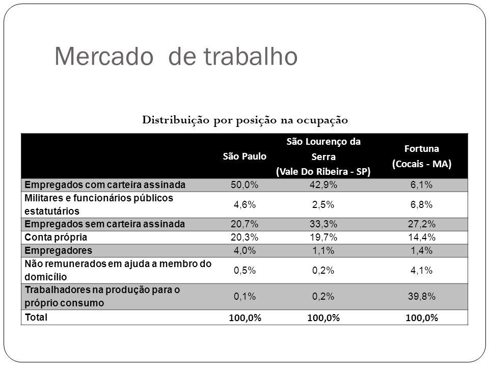 São Paulo São Lourenço da Serra (Vale Do Ribeira - SP) Fortuna (Cocais - MA) Empregados com carteira assinada50,0%42,9%6,1% Militares e funcionários públicos estatutários 4,6%2,5%6,8% Empregados sem carteira assinada20,7%33,3%27,2% Conta própria20,3%19,7%14,4% Empregadores4,0%1,1%1,4% Não remunerados em ajuda a membro do domicílio 0,5%0,2%4,1% Trabalhadores na produção para o próprio consumo 0,1%0,2%39,8% Total 100,0% Distribuição por posição na ocupação Mercado de trabalho