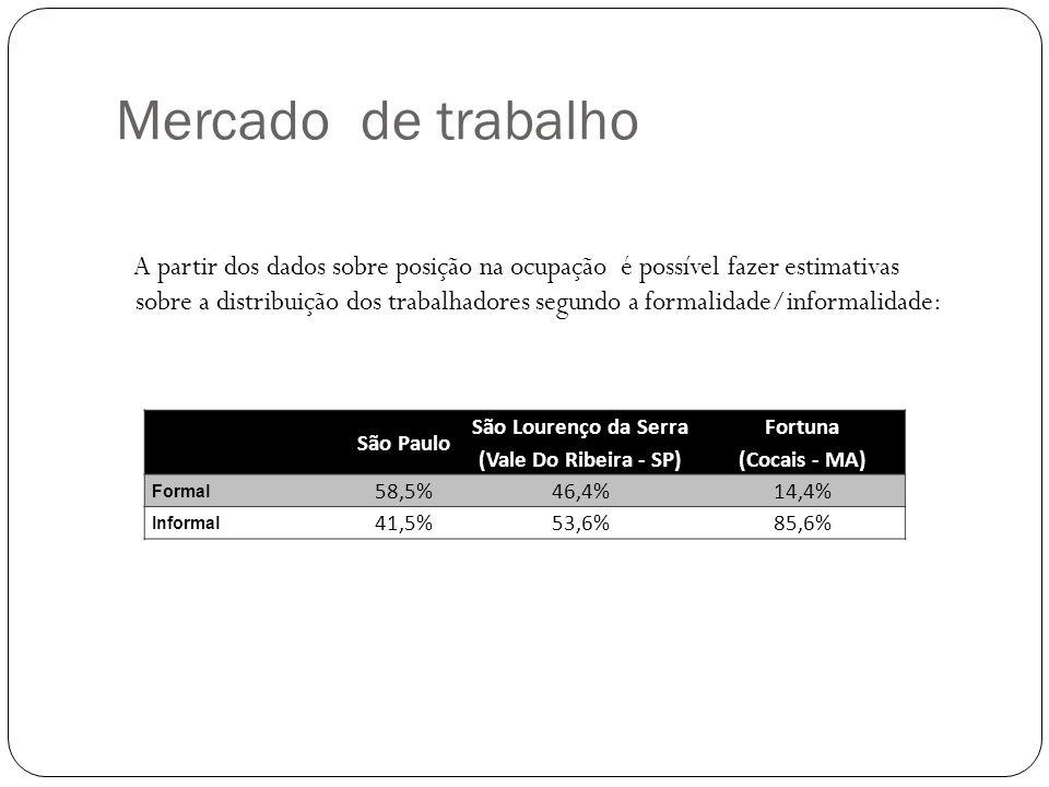 A partir dos dados sobre posição na ocupação é possível fazer estimativas sobre a distribuição dos trabalhadores segundo a formalidade/informalidade: Mercado de trabalho São Paulo São Lourenço da Serra (Vale Do Ribeira - SP) Fortuna (Cocais - MA) Formal 58,5%46,4%14,4% Informal 41,5%53,6%85,6%