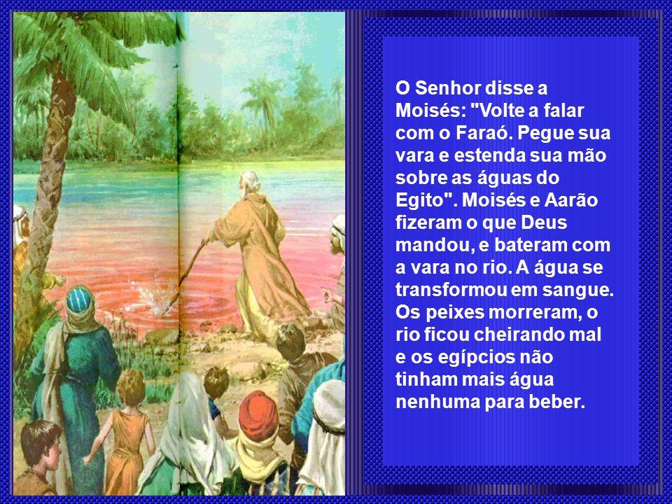 O Senhor disse a Moisés: Volte a falar com o Faraó.