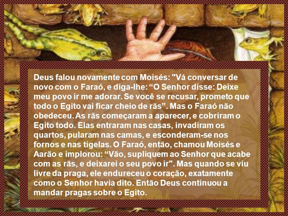 Deus falou novamente com Moisés: Vá conversar de novo com o Faraó, e diga-lhe: O Senhor disse: Deixe meu povo ir me adorar.