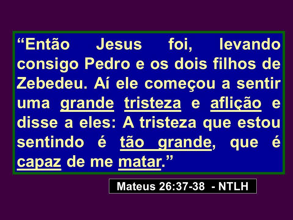 """""""Então Jesus foi, levando consigo Pedro e os dois filhos de Zebedeu. Aí ele começou a sentir uma grande tristeza e aflição e disse a eles: A tristeza"""