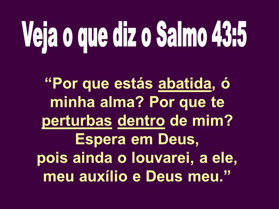 """""""Por que estás abatida, ó minha alma? Por que te perturbas dentro de mim? Espera em Deus, pois ainda o louvarei, a ele, meu auxílio e Deus meu."""""""