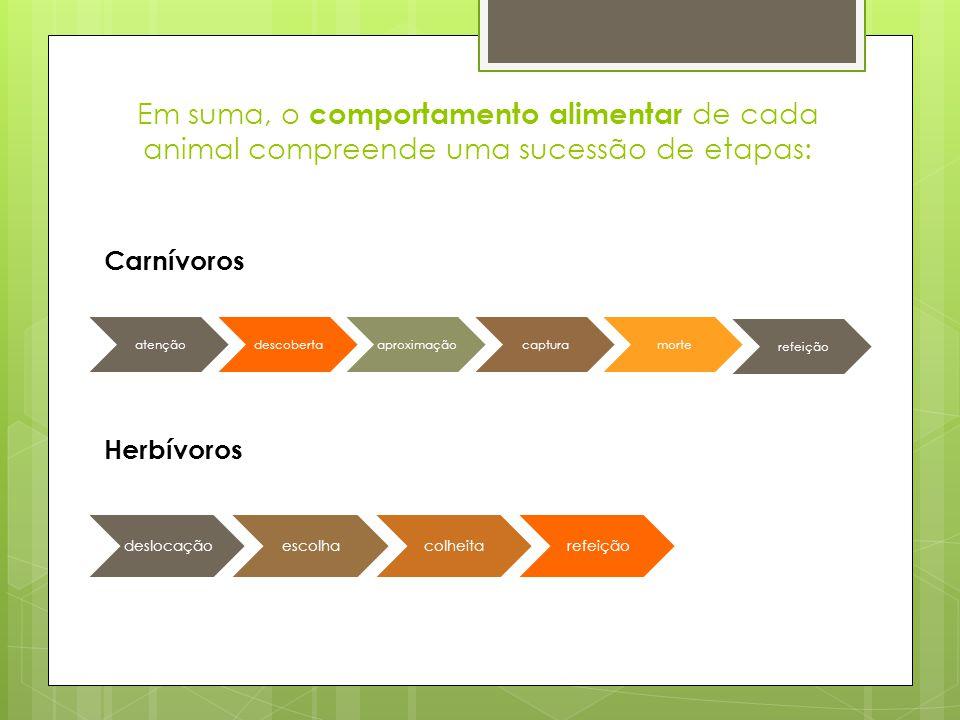 Em suma, o comportamento alimentar de cada animal compreende uma sucessão de etapas: atençãodescobertaaproximaçãocapturamorte refeição deslocaçãoescol