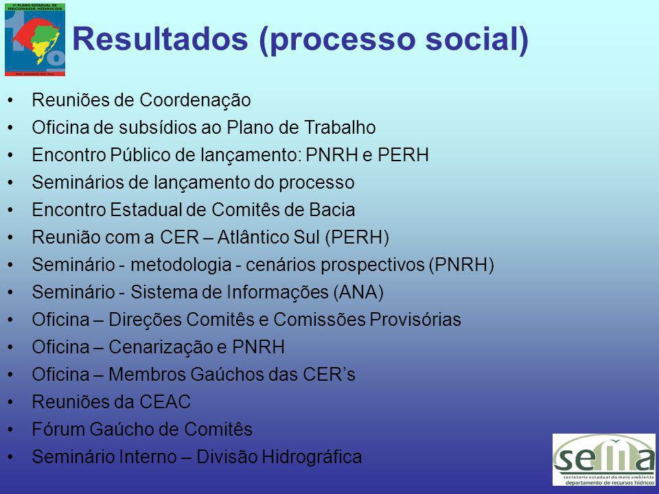 Resultados (processo social) Reuniões de Coordenação Oficina de subsídios ao Plano de Trabalho Encontro Público de lançamento: PNRH e PERH Seminários de lançamento do processo Encontro Estadual de Comitês de Bacia Reunião com a CER – Atlântico Sul (PERH) Seminário - metodologia - cenários prospectivos (PNRH) Seminário - Sistema de Informações (ANA) Oficina – Direções Comitês e Comissões Provisórias Oficina – Cenarização e PNRH Oficina – Membros Gaúchos das CER's Reuniões da CEAC Fórum Gaúcho de Comitês Seminário Interno – Divisão Hidrográfica