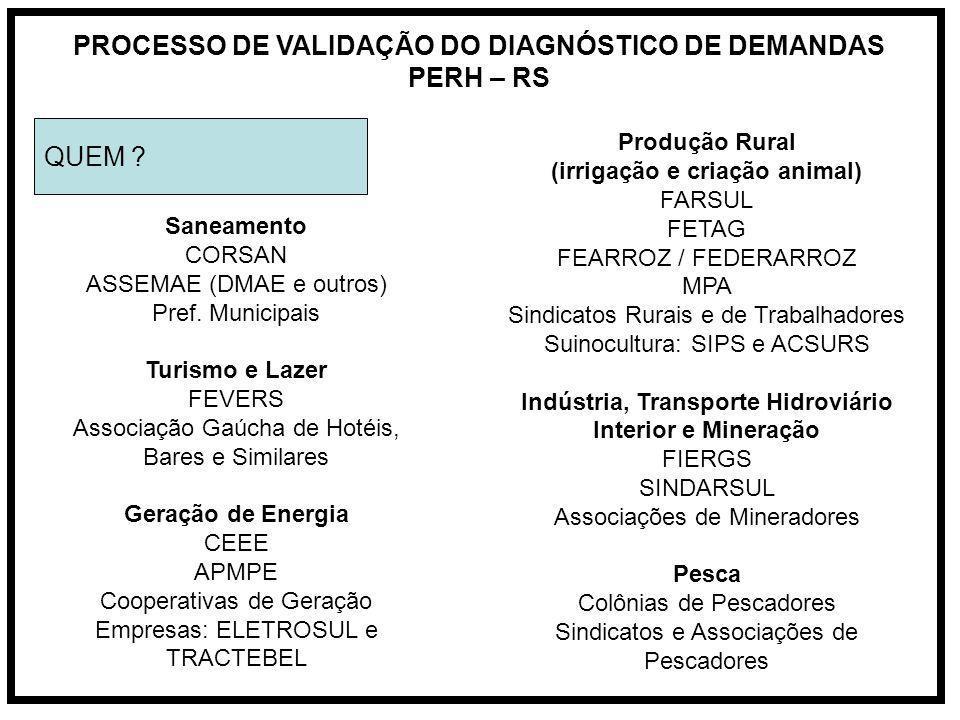 PROCESSO DE VALIDAÇÃO DO DIAGNÓSTICO DE DEMANDAS PERH – RS QUEM .