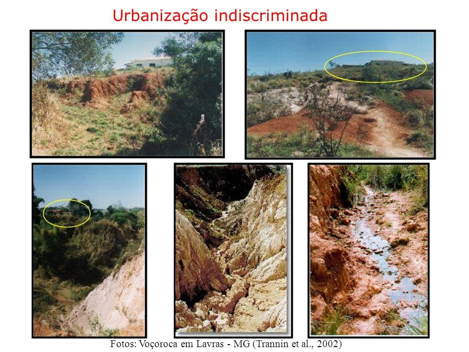 Urbanização indiscriminada Fotos: Voçoroca em Lavras - MG (Trannin et al., 2002)
