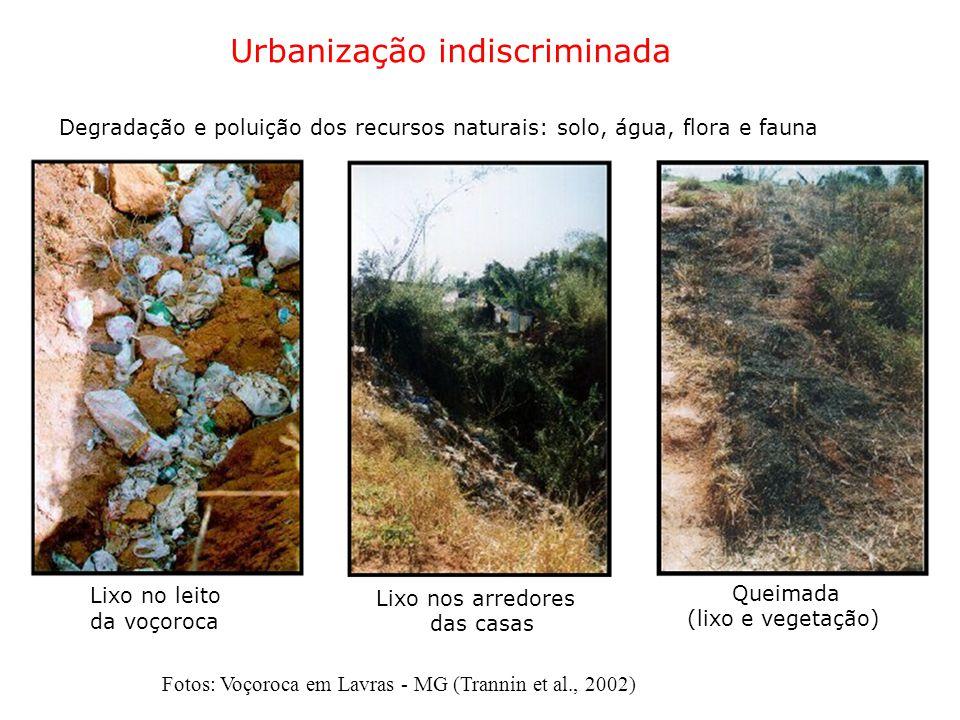Urbanização indiscriminada Degradação e poluição dos recursos naturais: solo, água, flora e fauna Lixo no leito Queimada Lixo nos arredores da voçoroc