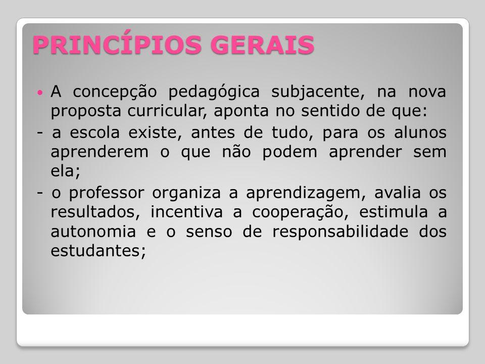 PRINCÍPIOS GERAIS A concepção pedagógica subjacente, na nova proposta curricular, aponta no sentido de que: - a escola existe, antes de tudo, para os