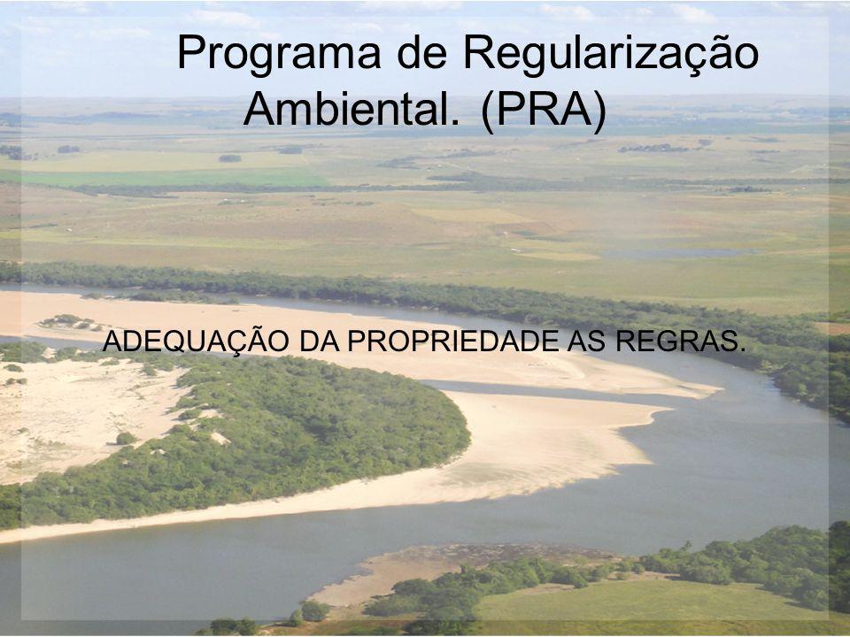 Programa de Regularização Ambiental. (PRA) ADEQUAÇÃO DA PROPRIEDADE AS REGRAS.