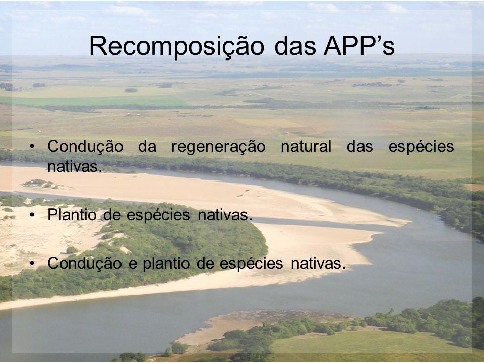 Recomposição das APP's Condução da regeneração natural das espécies nativas. Plantio de espécies nativas. Condução e plantio de espécies nativas.
